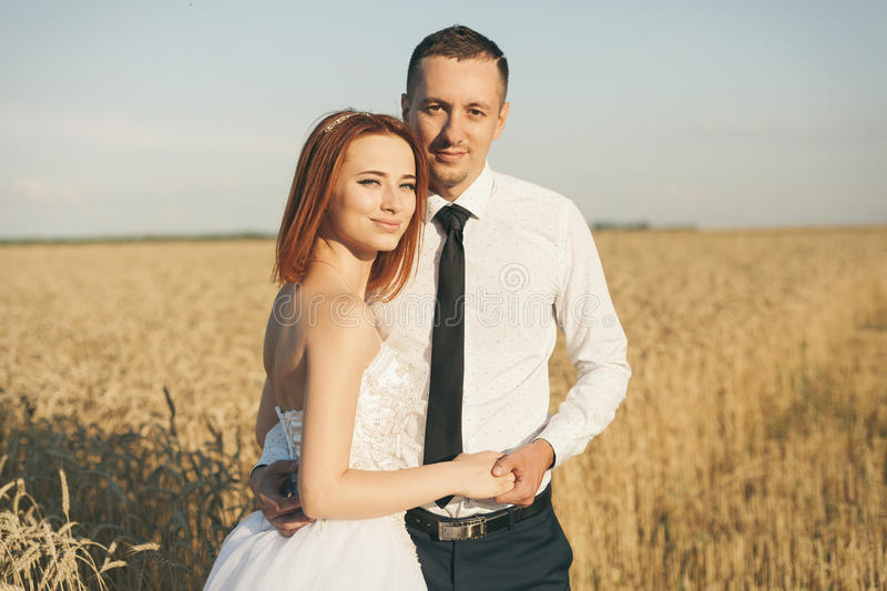 Gorgeous bride and groom in wheat field. Happiness and marriage royalty free stock photos