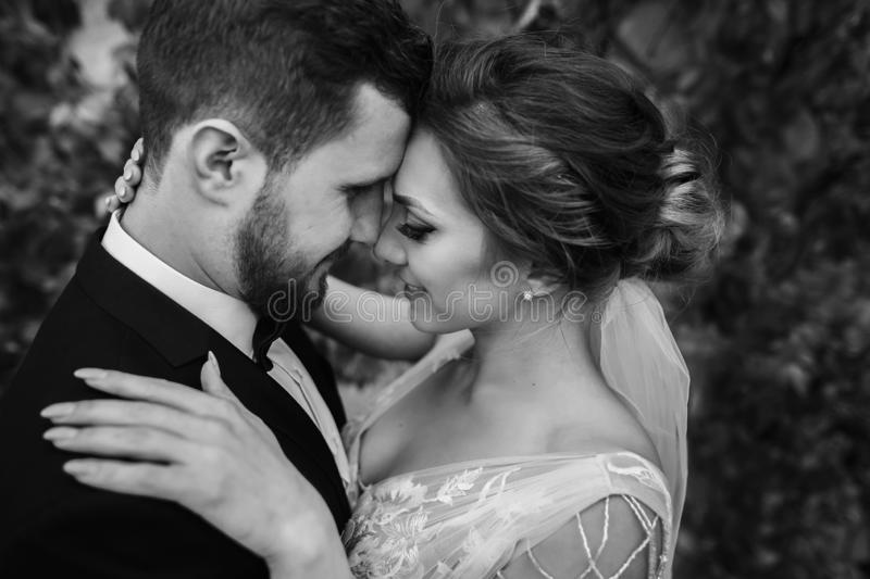Gorgeous bride and stylish groom gently hugging and kissing outdoors. Sensual wedding couple embracing. Romantic moments of newly royalty free stock photography