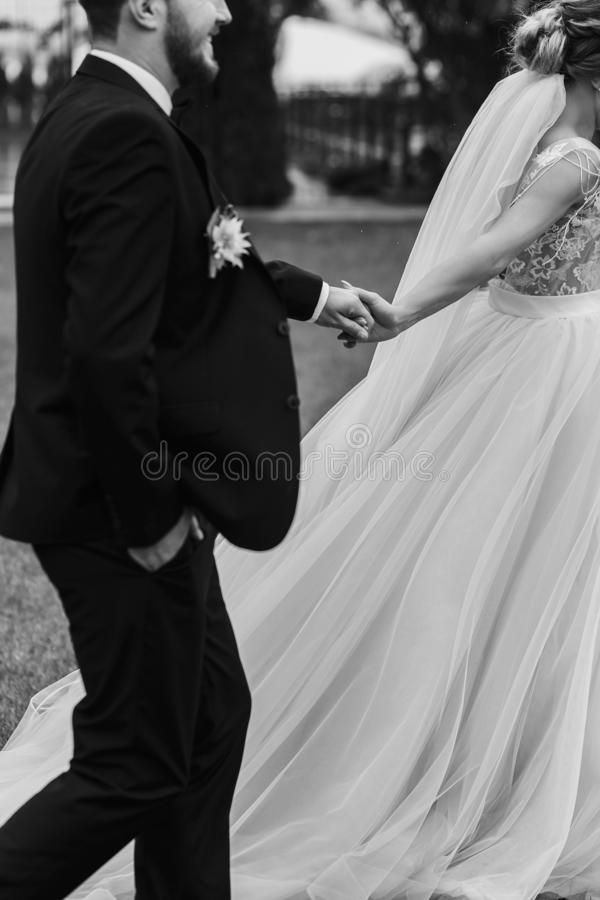 Gorgeous bride and stylish groom holding hands and walking outdo royalty free stock image