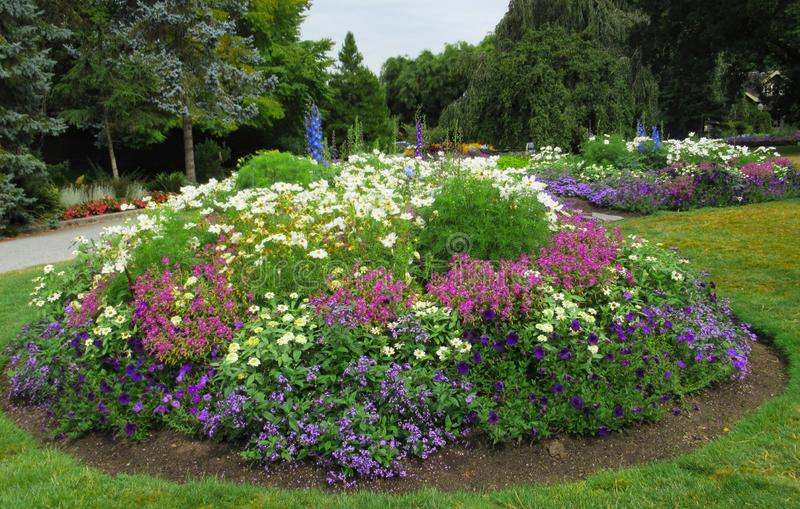 Gorgeous Bright Colorful Mixed Flower Bed At Stanley Park Perennial Garden, British Columbia. Gorgeous Bright Colourful Mixed Flower Bed At Stanley Park royalty free stock photos