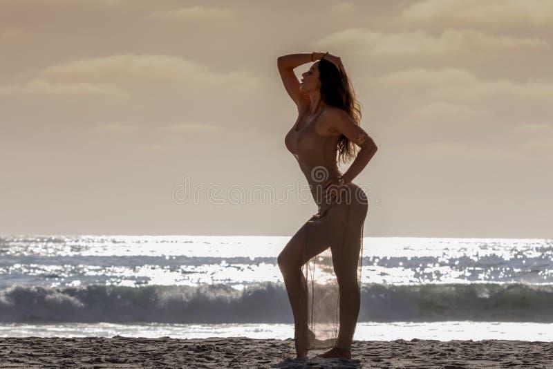 Lovely Brunette Bikini Model Relaxing On The Shoreline At Sunset stock photo