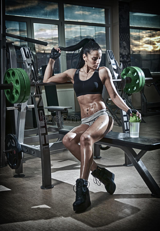 Gorgeous brunette lifting some weights and working on her biceps in a gym. Fitness woman doing workout. Sporty girl doing exercise. In fitness center. Beautiful stock image