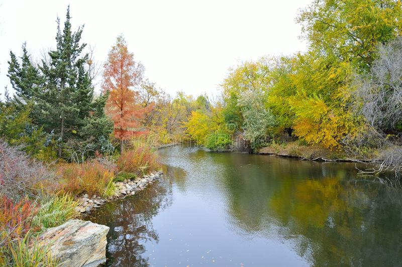 Download Fall Foliage Boise Idaho Albertson Park Stock Image - Image of landscape, branch: 103639459