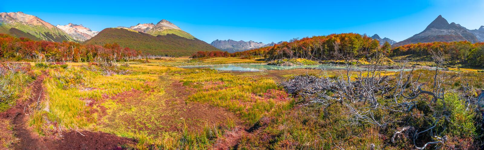 Gorgeous landscape of Patagonia`s Tierra del Fuego National Park in Autumn royalty free stock images