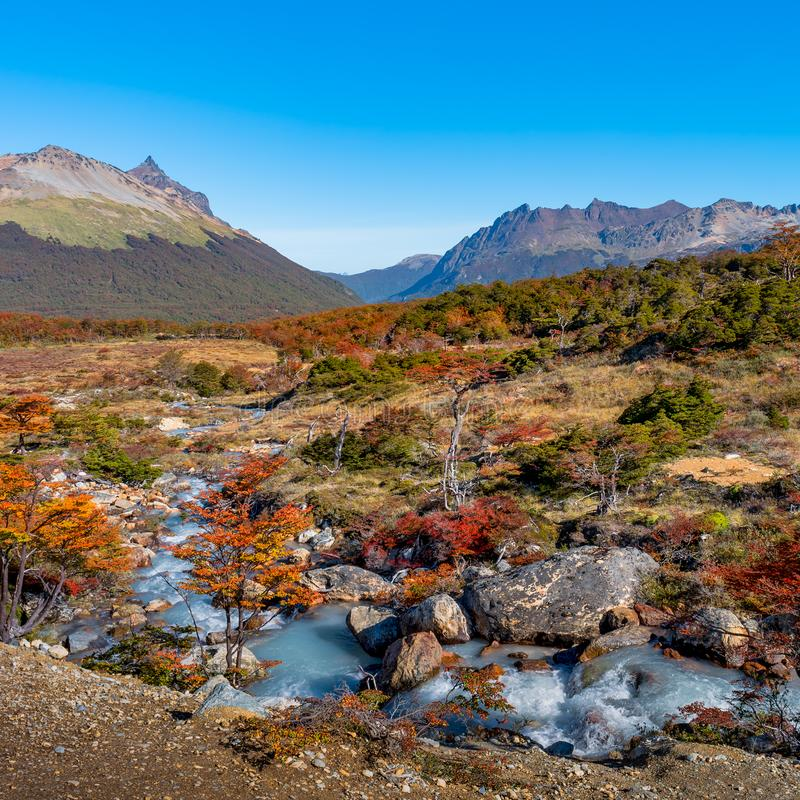 Gorgeous landscape of Patagonia`s Tierra del Fuego National Park royalty free stock photos