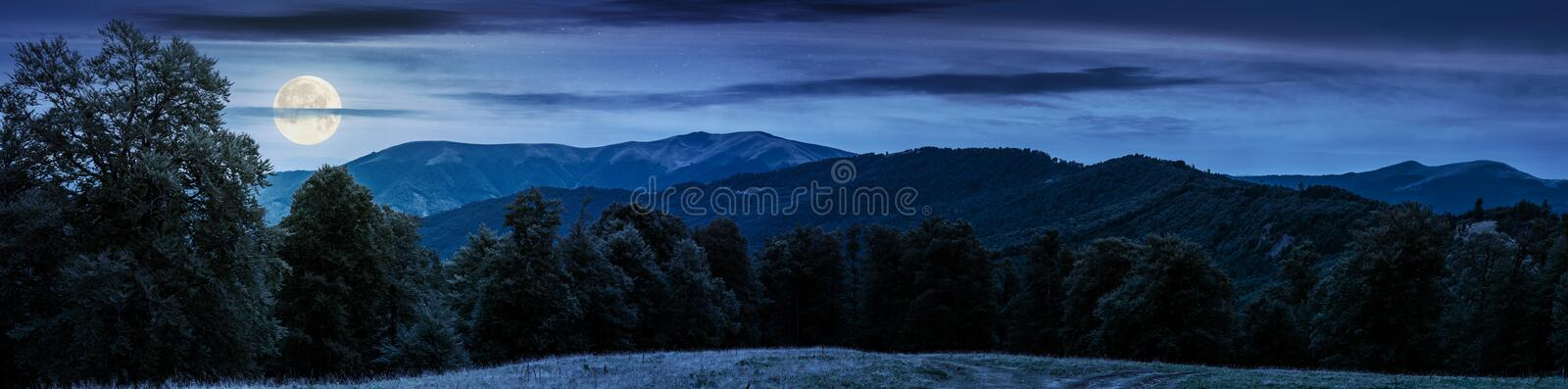 Gorgeous mountain panorama in summer at night royalty free stock photography