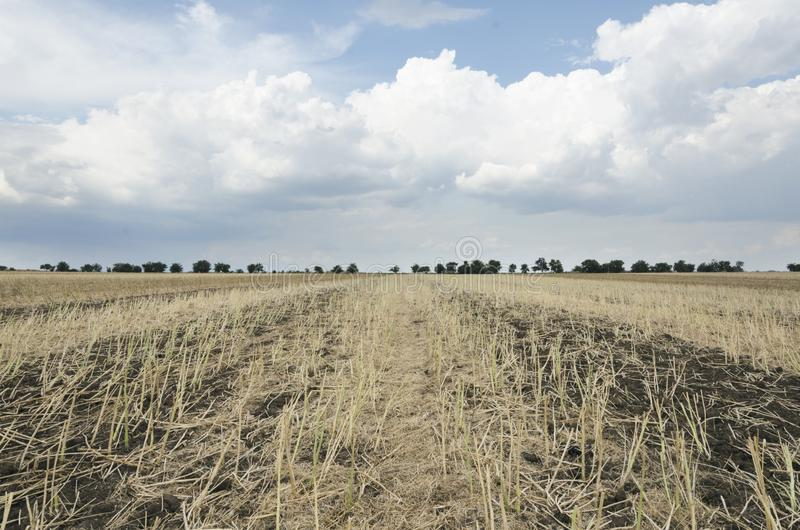 Gorgeous rural landscape.Sunny day i the field after harvest stock photo