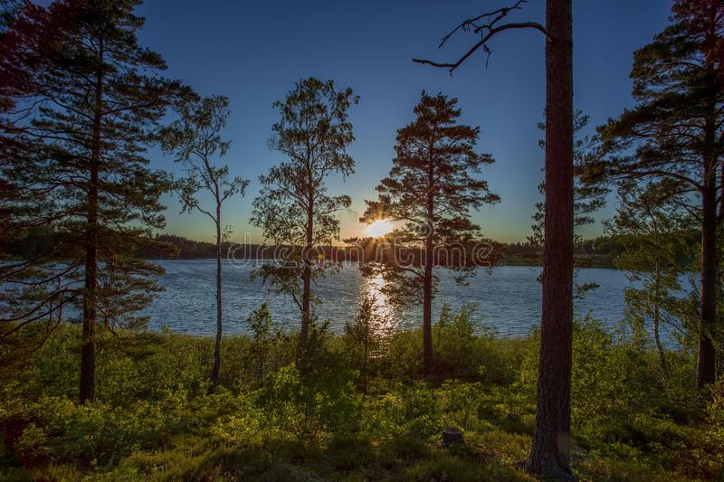 Gorgeous sunset on forest lake view. Beautiful summer backgrounds. Europe. stock images