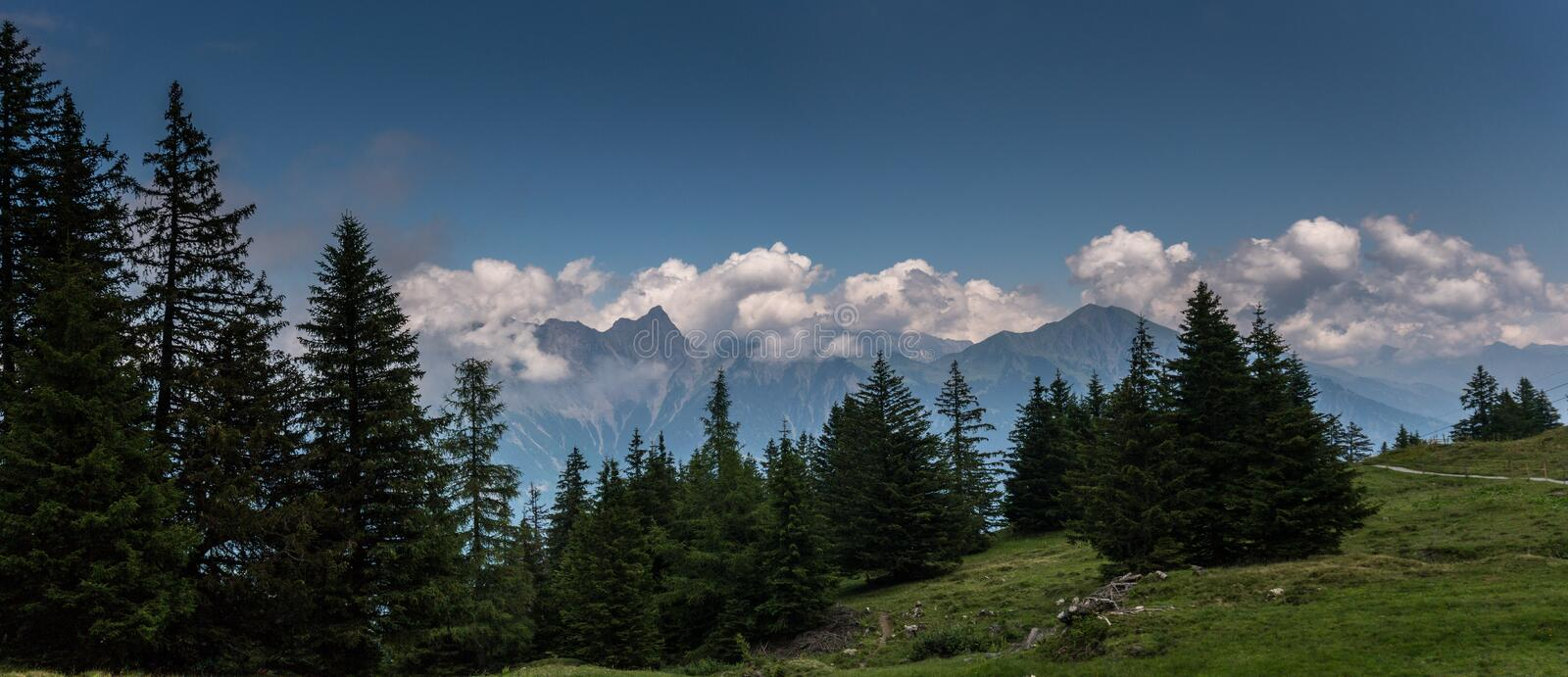 Gorgeous Swiss Alps mountain landscape in summer with forest in the foreground stock images