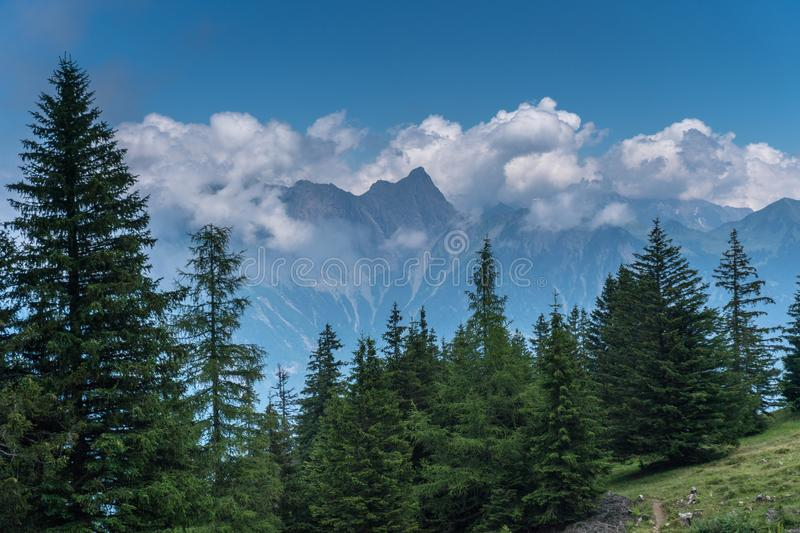 Gorgeous Swiss Alps mountain landscape in summer with forest in the foreground royalty free stock image