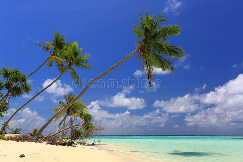 Gorgeous view of Indian Ocean, Maldives. White sand beach, turquoise water, blue sky and white clouds. royalty free stock photography