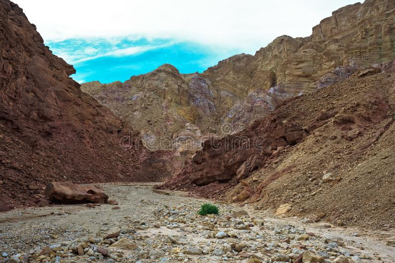Gorgeous warm day. In January. Mountains of Eilat, Israel. The road to the Pillars of Amram royalty free stock images