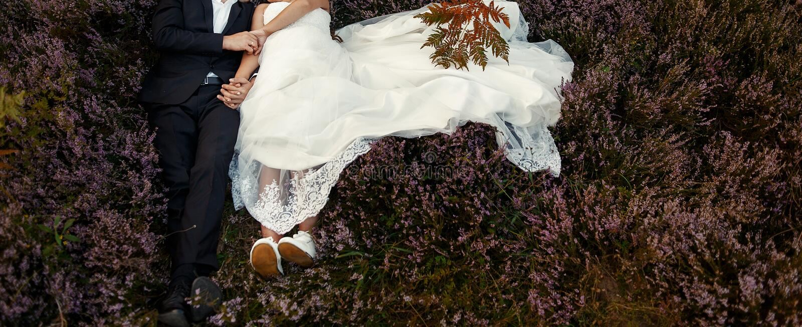 Gorgeous wedding couple embracing in sunlight lying in heather m royalty free stock photography