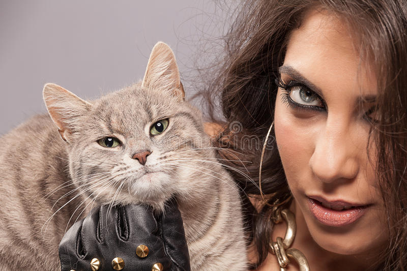 Download Gorgeous woman with cat stock image. Image of beauty - 25651461