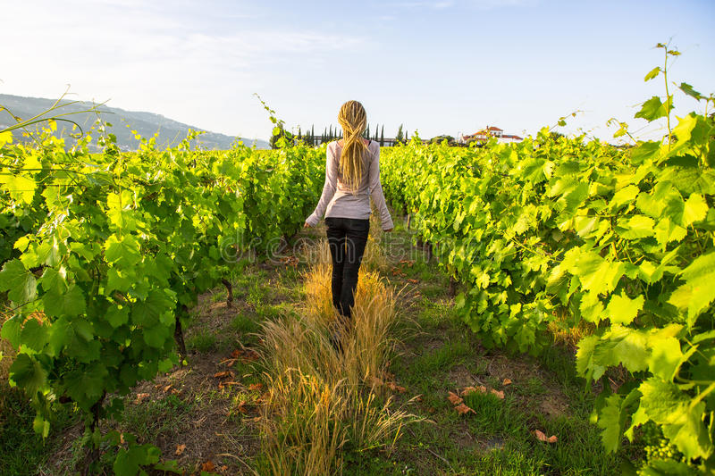 Gorgeous young with blond dreadlocks have fun in the vineyards. royalty free stock images