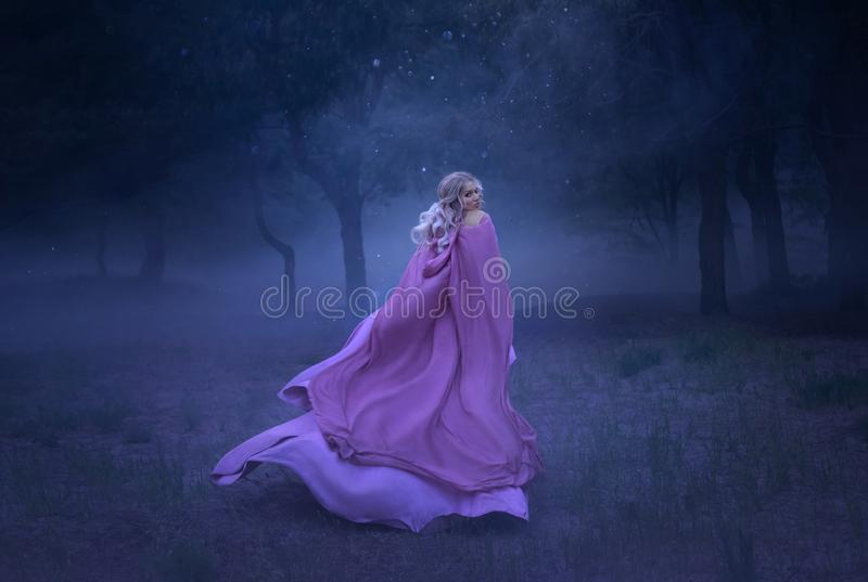 A gorgeous young elf princess with blond hair that flees in a forest full of white mist, dressed in a long, expensive. Gorgeous young elf princess with blond stock photography