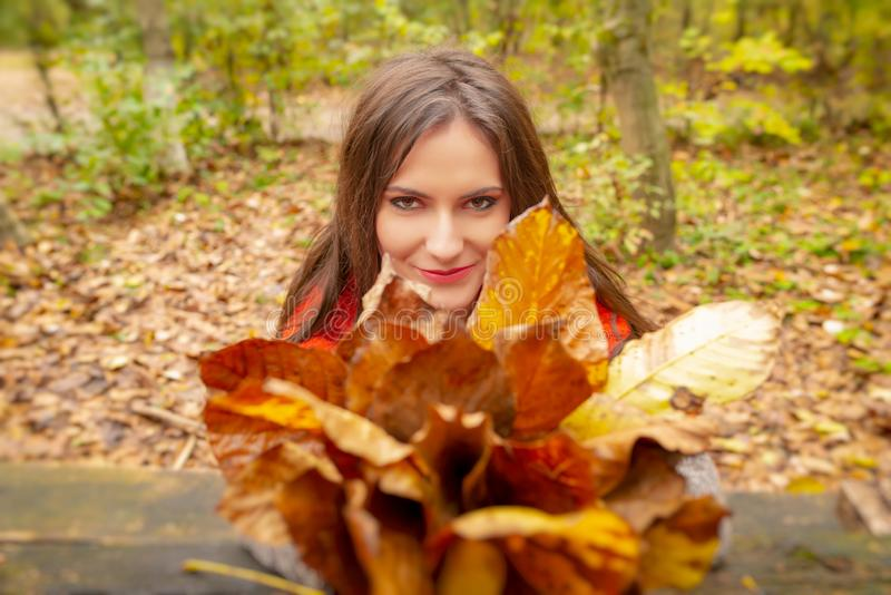 Gorgeous young woman outdoors, in a park autumn scenery, holding yellow leaves, looking at the camera and smiling. Close stock images