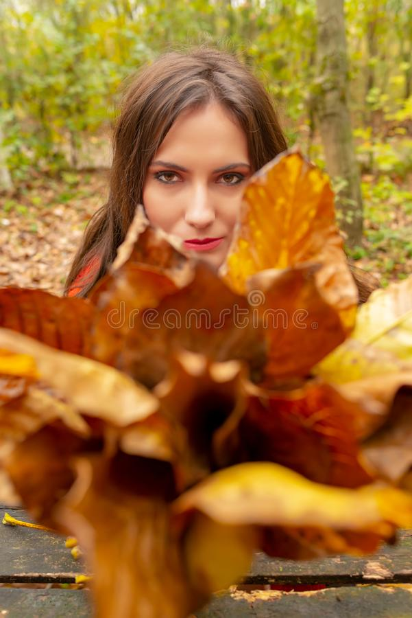 Gorgeous young woman outdoors, in a park autumn scenery, holding yellow leaves and looking focused through them at the stock photography