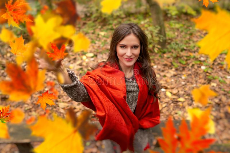 Gorgeous young woman outdoors, in a park autumn scenery, throwing up in the air many yellow leaves, looking at the stock photo