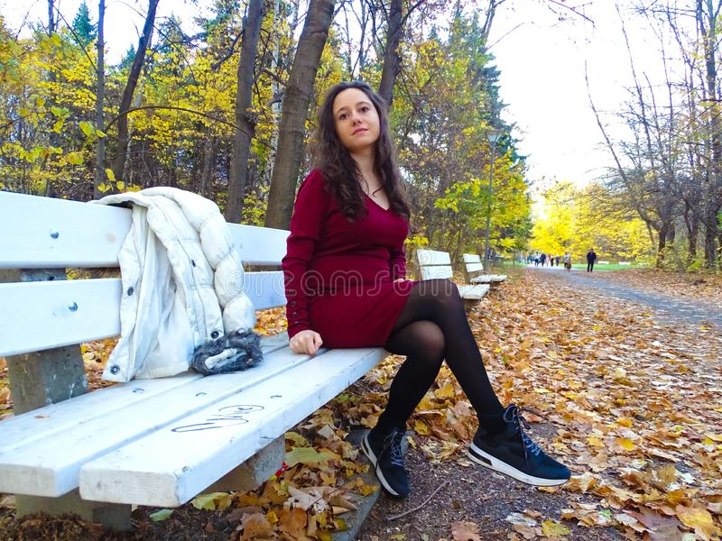 Gorgeous young woman with sincere smile enjoying the beautiful autumn in the park stock image