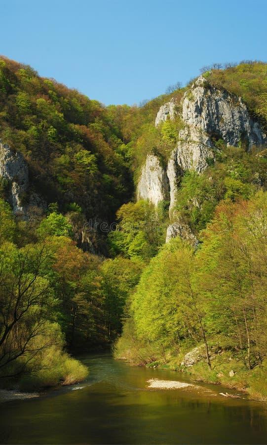 gorges стоковые изображения rf