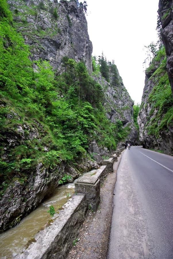 gorges bicaz стоковая фотография