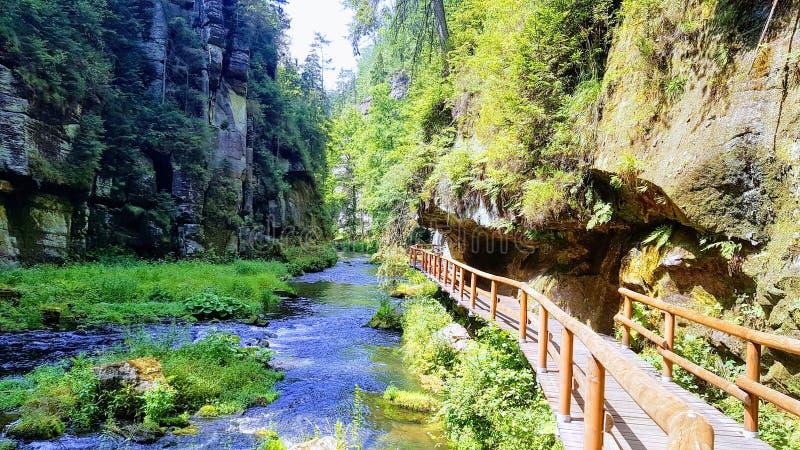 Gorges Kamenice Hrensko Tjeckien arkivfoton