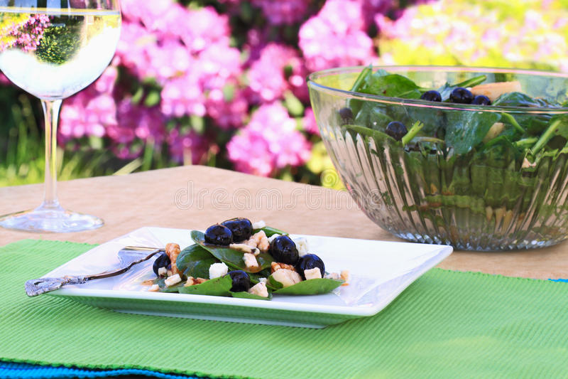 gorgonzola σπανάκι σαλάτας στοκ εικόνα με δικαίωμα ελεύθερης χρήσης