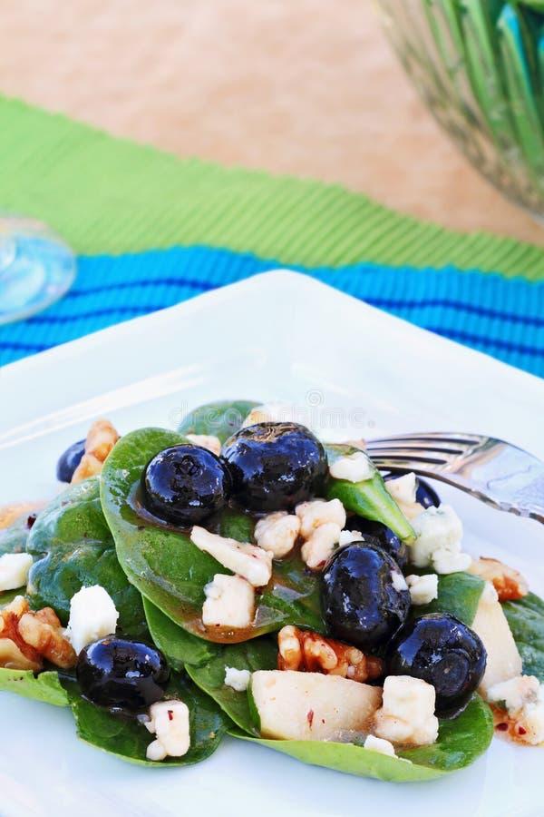 gorgonzola σπανάκι σαλάτας στοκ φωτογραφία με δικαίωμα ελεύθερης χρήσης
