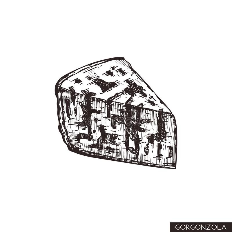 Vector Gorgonzola sketches. Hand drawn Italian blue cheese illustration. Vintage traditional food drawing on white background. Piz. Za ingredients stock illustration
