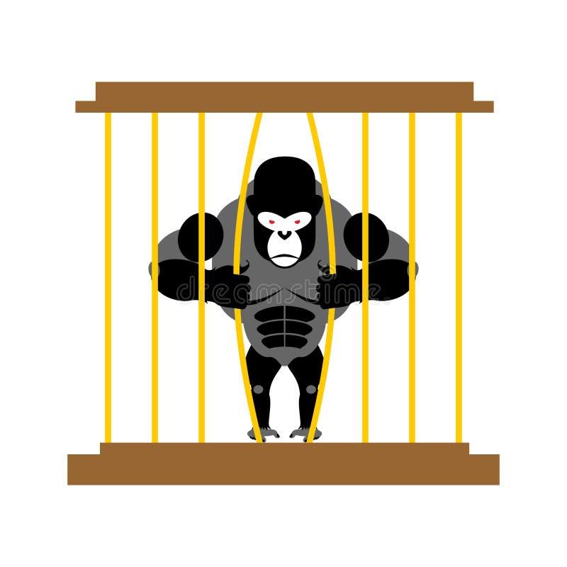 Gorila na gaiola no jardim zoológico Animal selvagem assustador forte no captiveiro ilustração stock