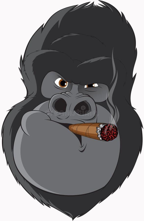 Gorilla with a cigarette. Vector illustration: gorilla smoking a cigar royalty free illustration
