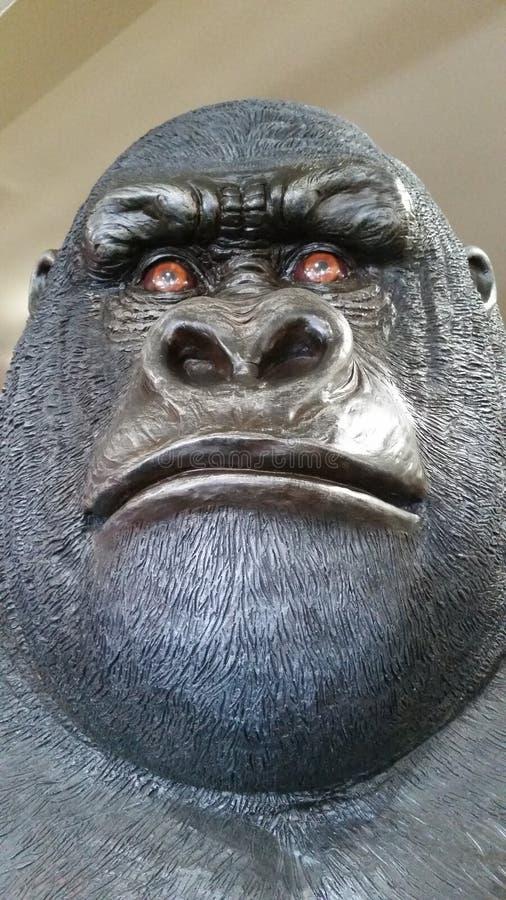 Gorilla Face foto de archivo