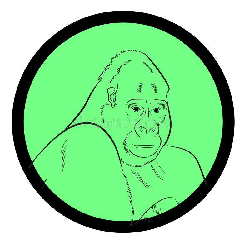 Gorilla Face Closeup Vector royalty illustrazione gratis