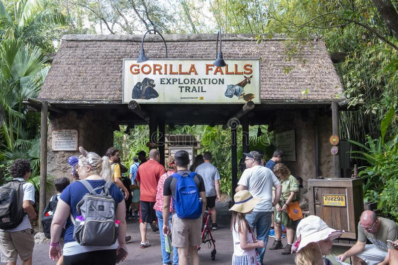 Gorilla Falls, Disney World, Reis, Dierenrijk stock foto