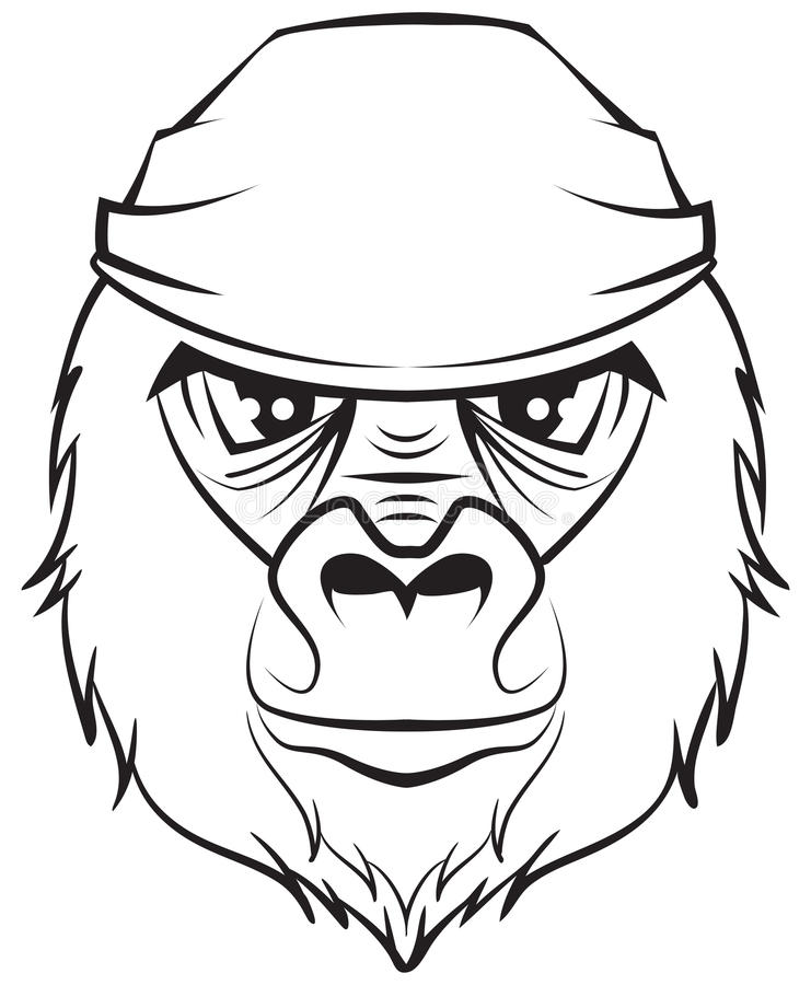 Gorilla Face Line Drawing : Gorilla head black and white drawing stock vector