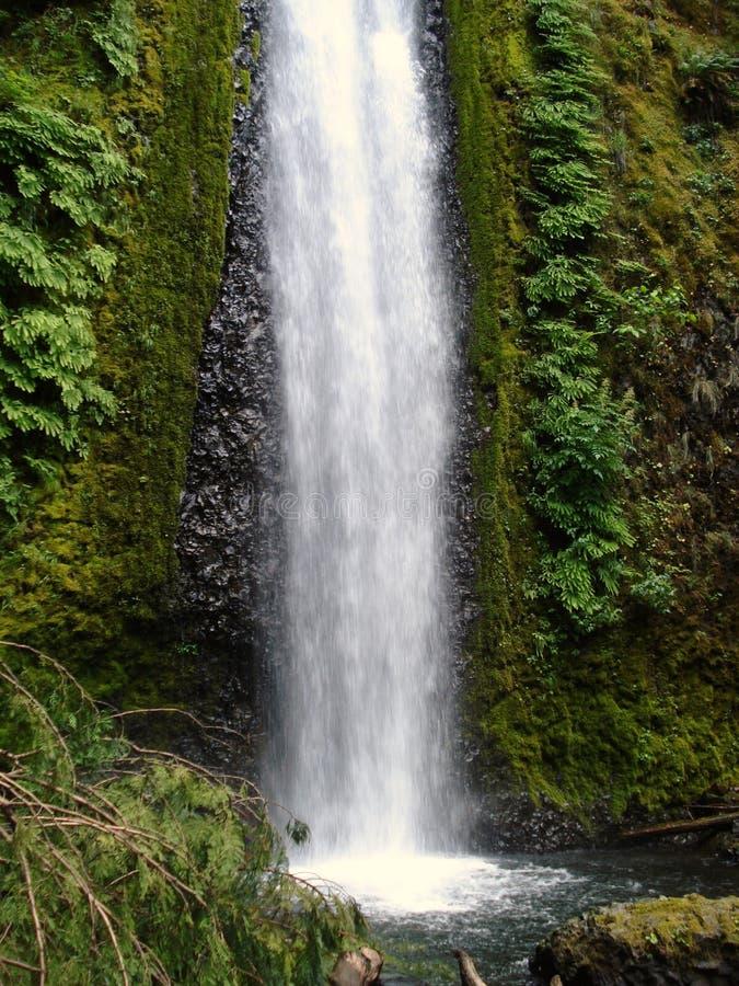 Gorton Creek Falls