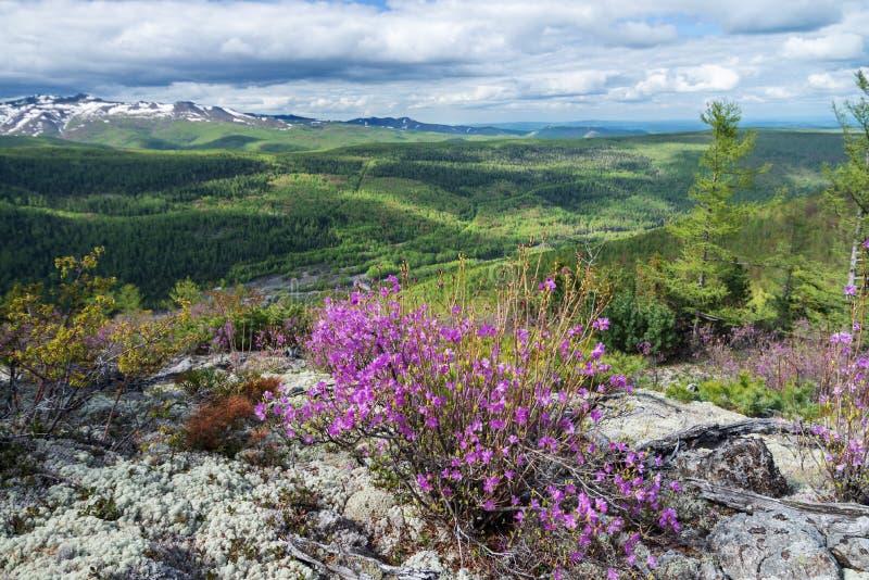Gory Ridge Miao Chan. Gory Ridge Miao Chan in the Russian Far East stock photo