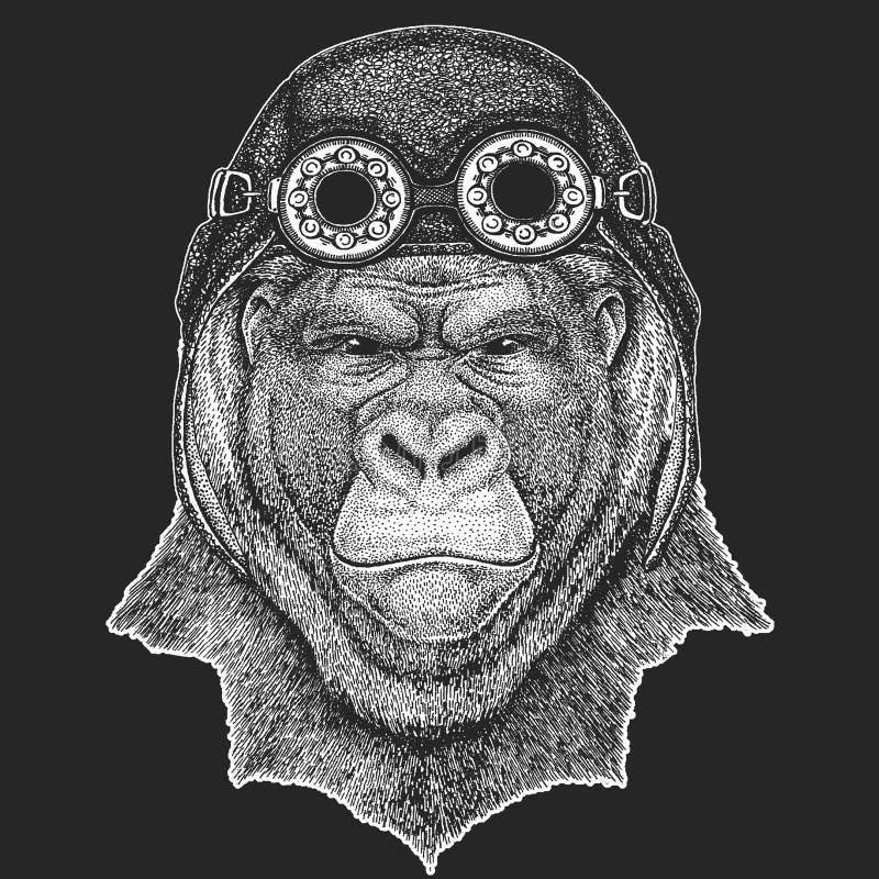 Goryl, małpa, małpuje Frightful zwierzęca ręka rysującego wizerunek dla tatuażu, emblemat, odznaka, logo, łata Chłodno zwierzęcy  ilustracja wektor