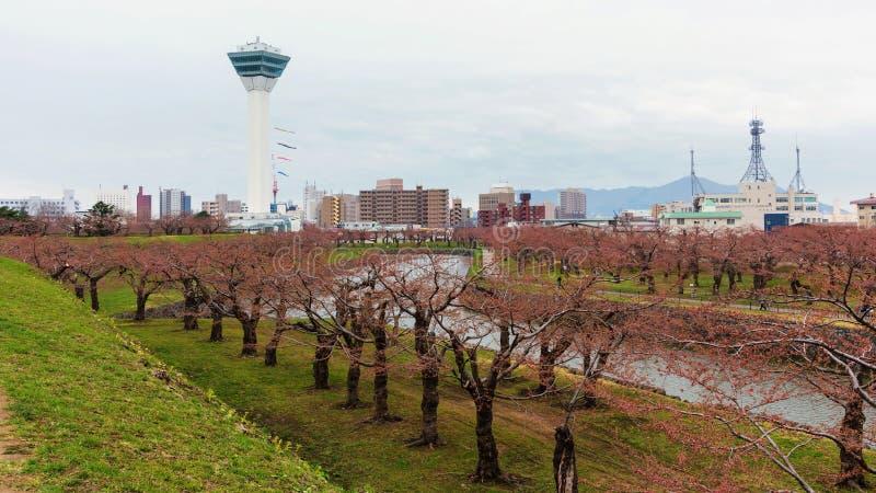 Goryokaku公园和塔,函馆 免版税库存图片