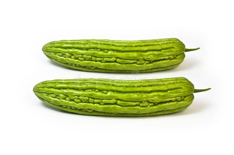 Gorzki ziele obraz stock