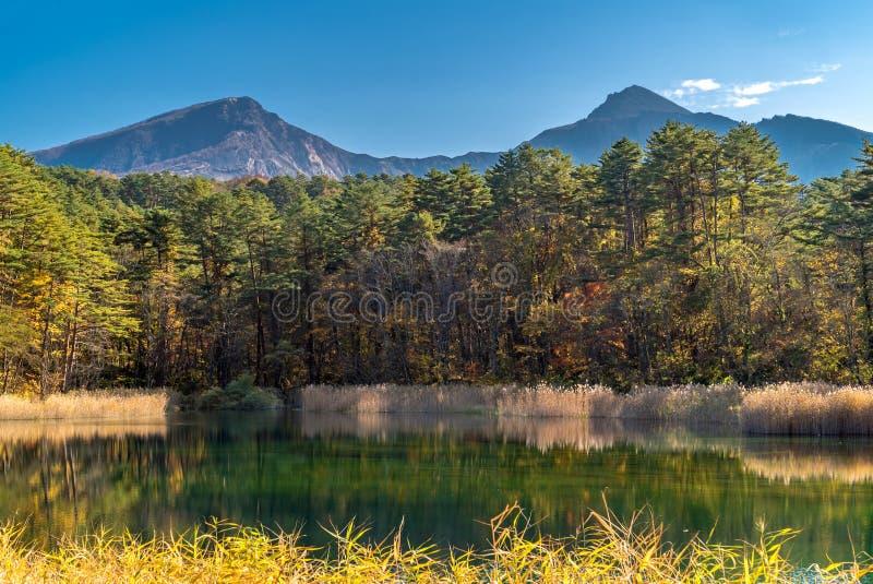 Goshiki-numa Urabandai Fukushima jesień Japonia fotografia royalty free