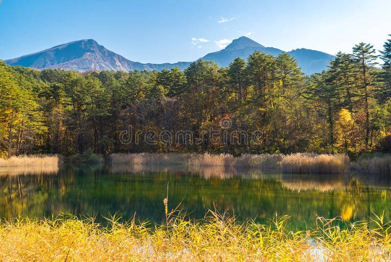 Goshiki-numa Urabandai Fukushima jesień Japonia obraz stock