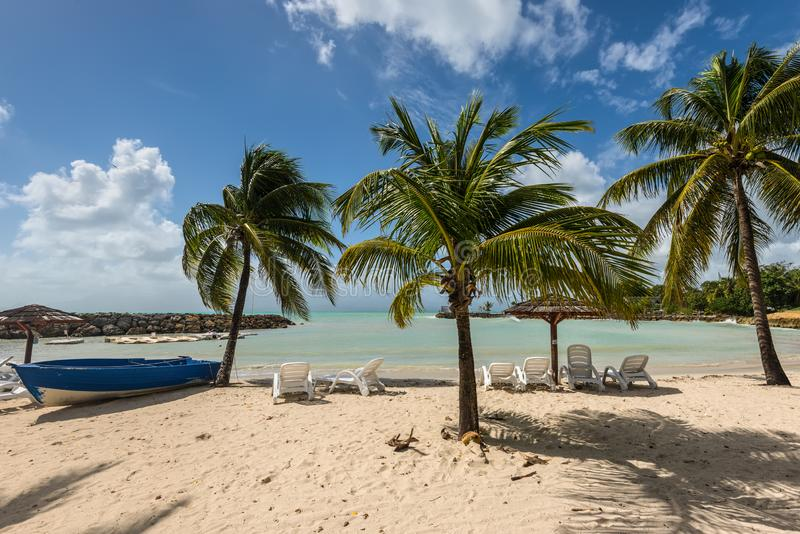 The Gosier in Guadeloupe - paradise tropical beach. Le Gosier, Guadeloupe - December 20, 2016: Tropical beach with palm trees, umbrellas and sunbeds near Le stock photo