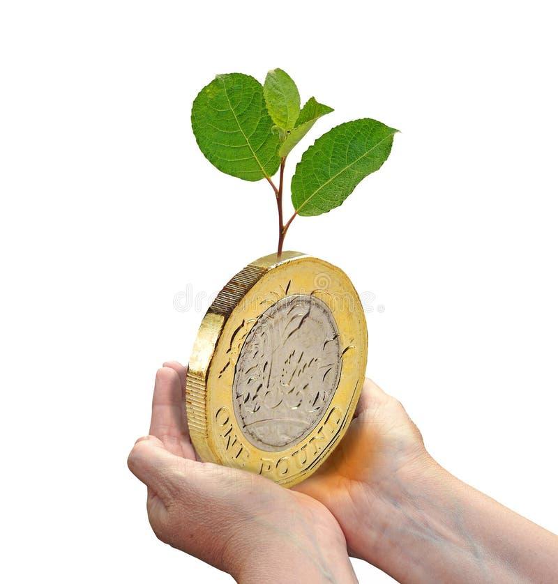 Gospodarki pieniężna wzrostowa inwestycja inwestuje ekologii środowiska rośliny przyszłości ziemskiego sukces zdjęcia royalty free