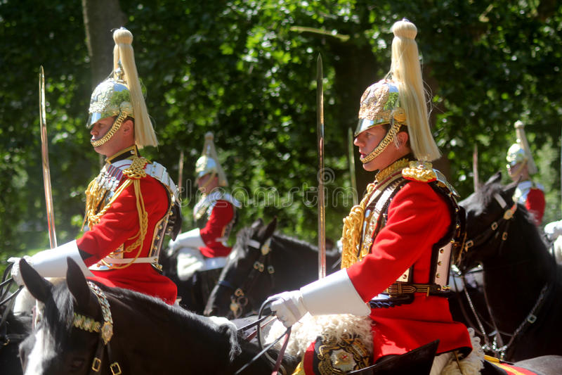 Gospodarstwo domowe kawaleria Wspinający się pułk obraz royalty free