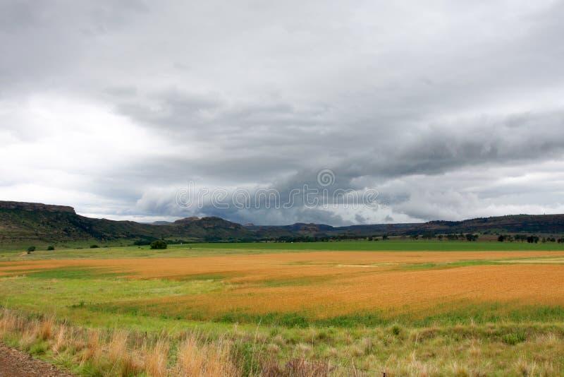 Gospodarstwo rolne zdjęcia stock