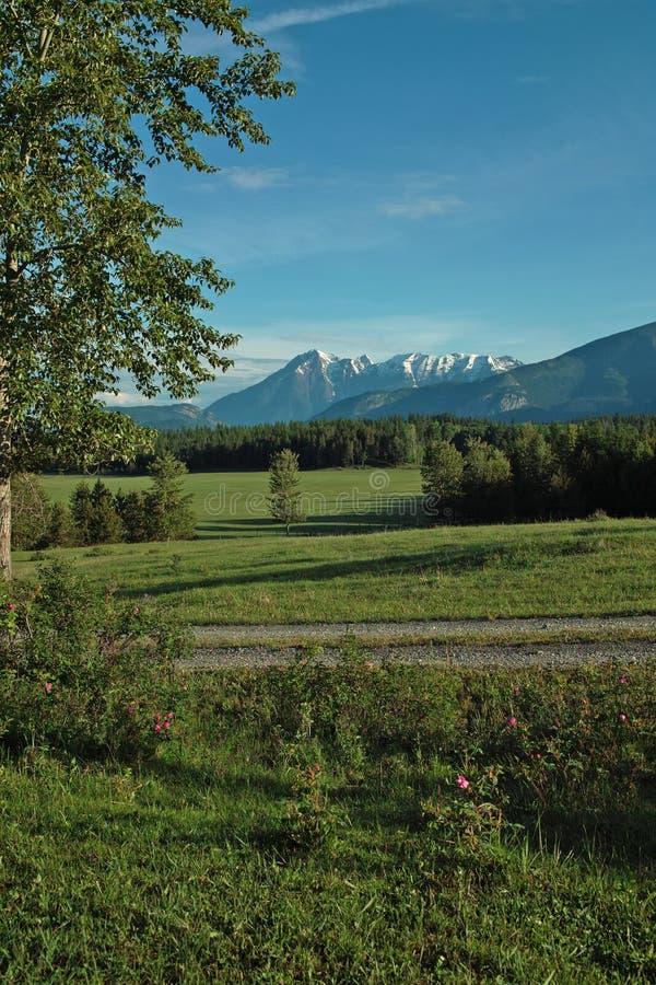 Gospodarstwo rolne, Kolumbia Rzeczna dolina, BC, Kanada zdjęcia royalty free