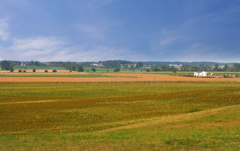 gospodarstwo rolne ląduje scenicznego zdjęcie stock