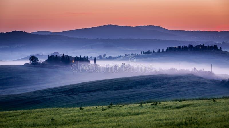 Gospodarstwo rolne oliwni gaje i winnicy w mgłowym ranku obrazy royalty free